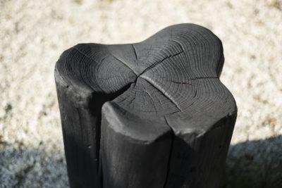 Burned Horny chunk