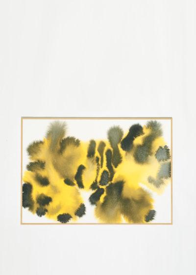 Tiger print (P1&P2) by Wild Animals