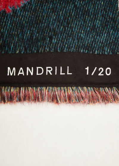 Bench player 'Mandrill' Wall hanging by Wild Animals