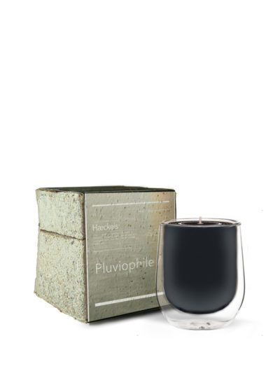 Rain scented 'Pluviophile' candle by Haeckels